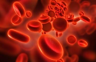 blood-purify